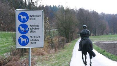 Gemeinde ruft die Reiter dazu auf: «Bitte lesen Sie die Rossbollen auf!»