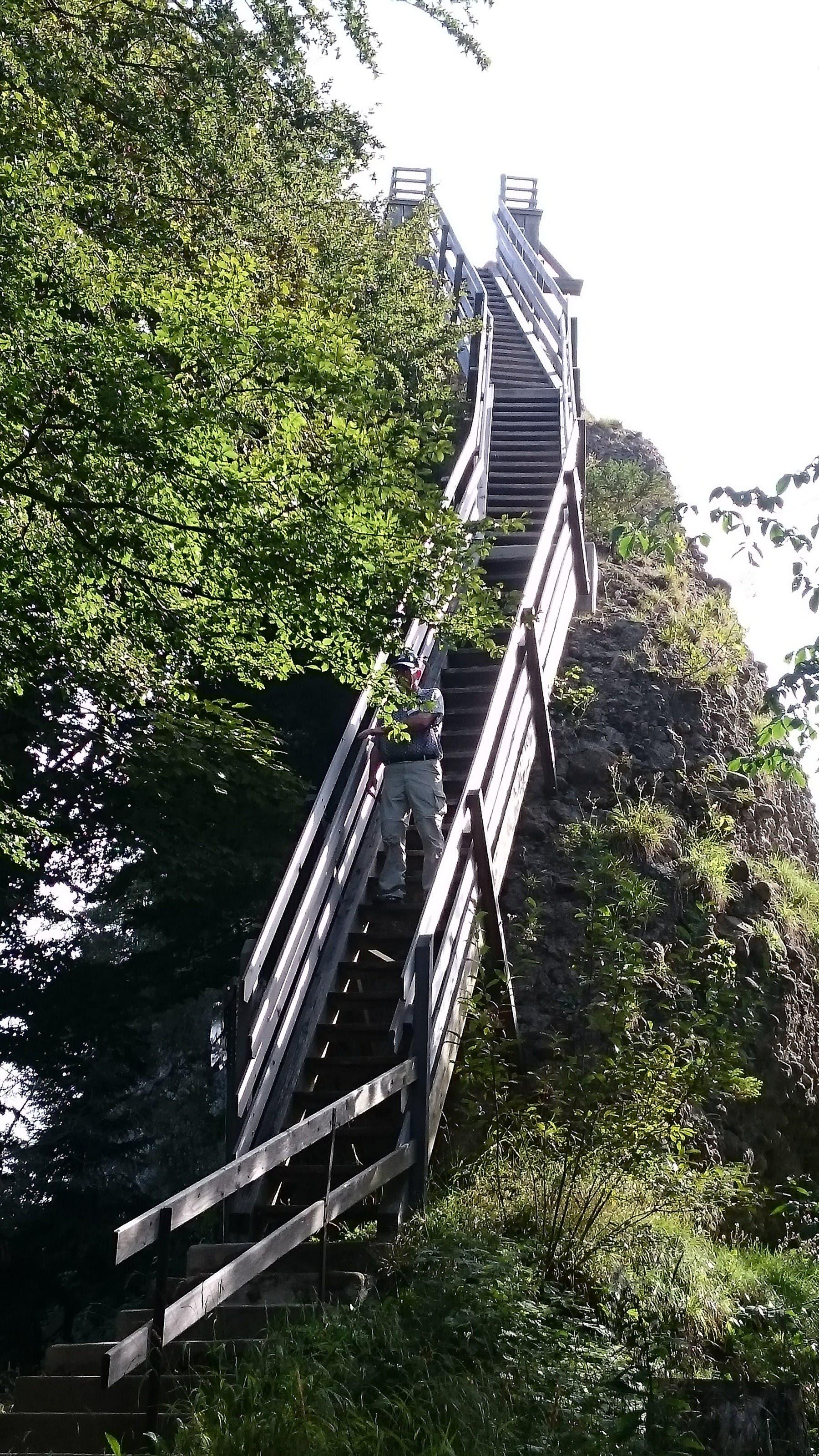 Aufstieg zum Guggershorn Eine steile, freiliegende Holztreppe führte auf's Guggershorn.