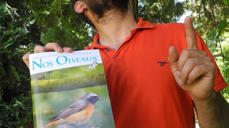 «Projekt Gartenrotschwanz»: Dieser Dietiker setzt sich für Vögel in der Stadt ein