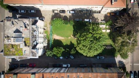 Rechts auf der Wiese an der Hadwigstrassewill die Pensionskasse einen Neubau erstellen. Der linke Teil der Wiese bliebe unbebaut. (Bild: Benjamin Manser (10. August 2020))