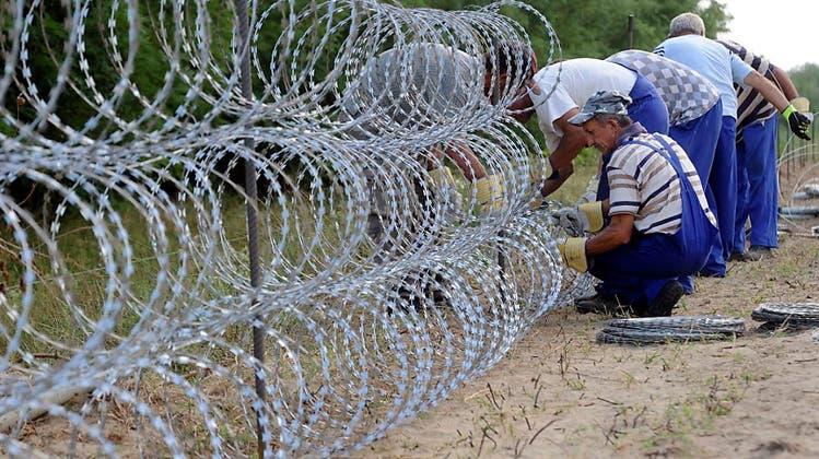 SVP will Zäune und Türme an der Schweizer Grenze