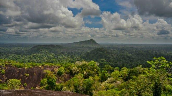 Auf Abenteuerreise in Surinam