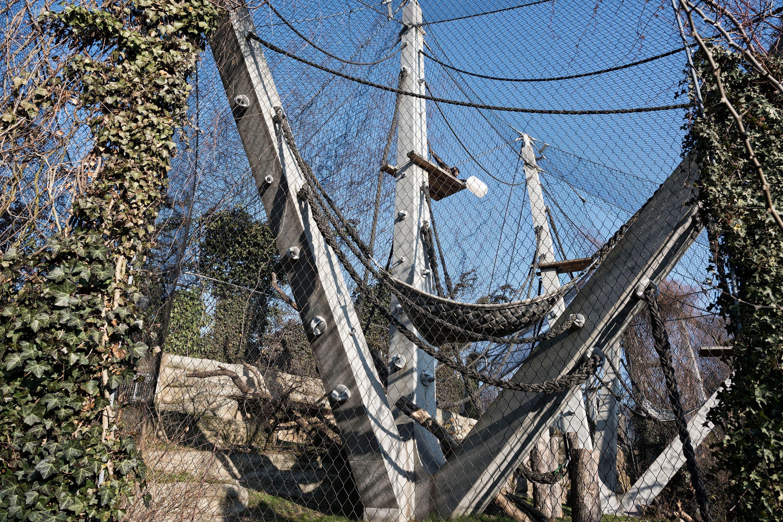 Zulauf hat auch die Affenanlage entworfen. Nach zehn Jahren zieht sich der Landschaftsarchitekt aus dem Zolli und seinem Büro zurück und macht sich selbstständig.