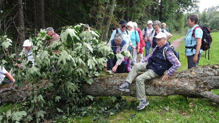 """Urdorfer """"Chumm und mach mit!""""-Seniorenferien in Höchenschwand"""