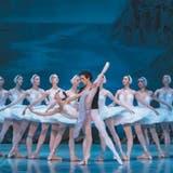 """Sehnsucht nach """"Schwanensee"""" - Russisches Ballett tourt wieder"""