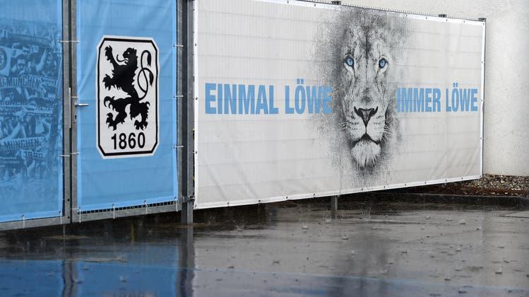Neustart der Münchner Löwen in der Regionalliga: Mit dabei ist auch ein Schweizer