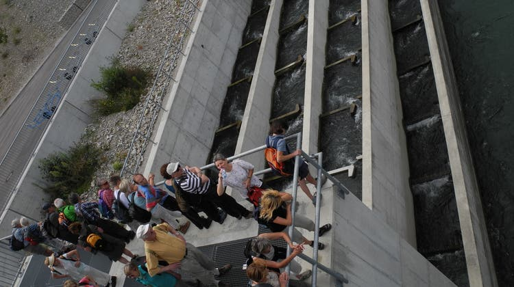 Neue Fischtreppe auf Schweizer Uferseite des Rheins