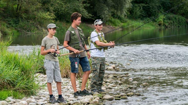 Hier beissen nur die Fische - und nicht die Angler