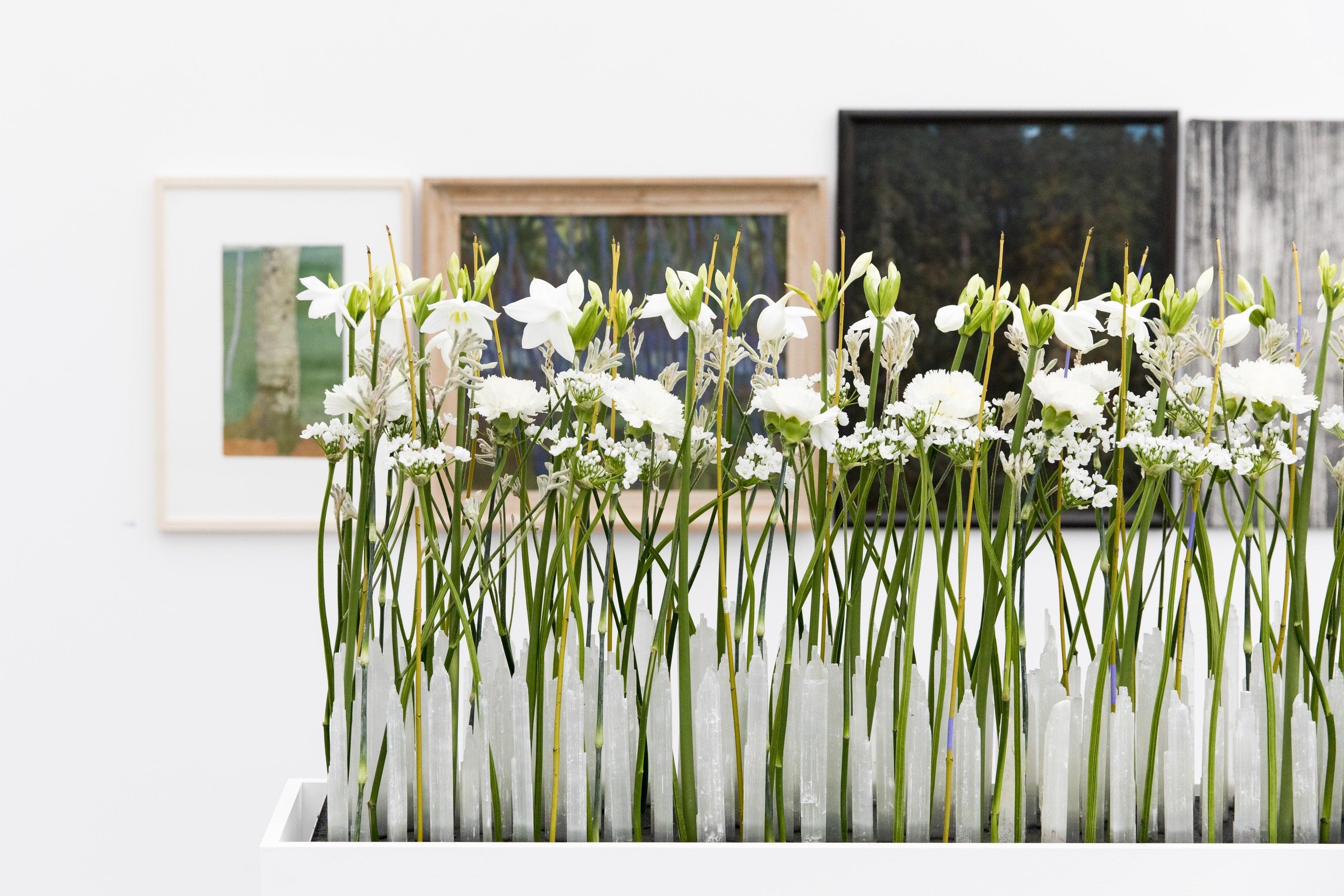 Aufbau Der Ausstellung Blumen Fur Die Kunst Im Aargauer Kunsthaus In Aarau Luzerner Zeitung