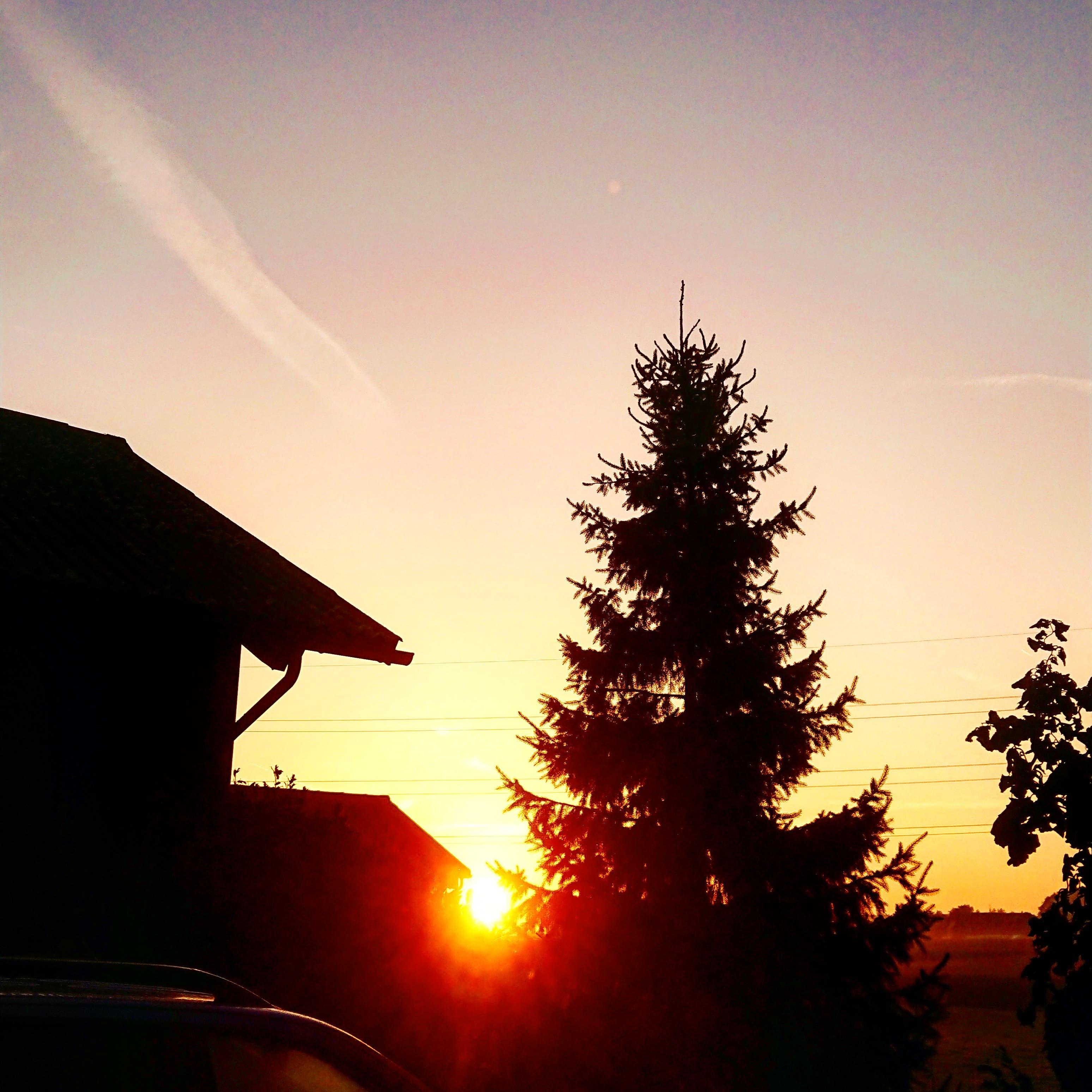 undefined Sonnenaufgang in Horriwil auf unserem Landwirtschaftlichen Betrieb