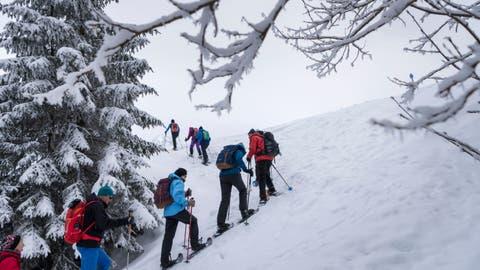 Winterruhe der Wildtiere im Wallis gestört