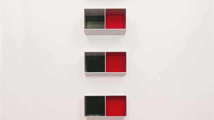 Die Alu Menziken produzierte Weltkunst: Die schlichten Boxen kosten über eine Million Dollar