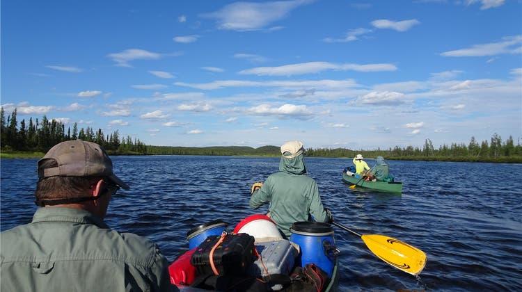 Abenteuer: Mit dem Kanu durch das Land der Bären