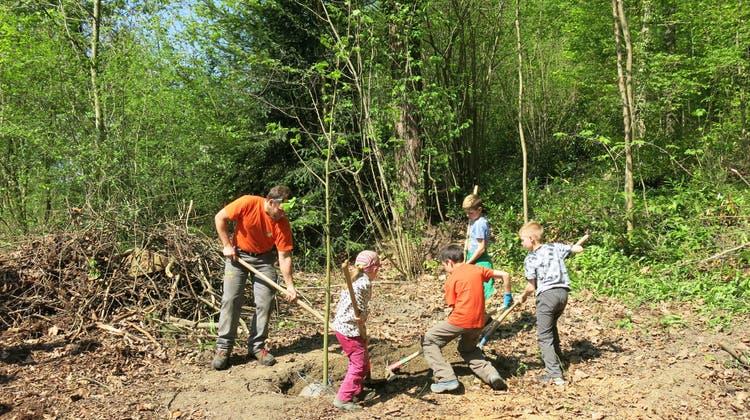 Mörknerinnen und Mörkner pflegen ihren Wald