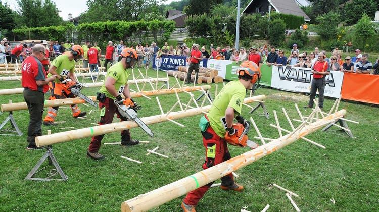 Förster messen ihre Kräfte im Holzhauen
