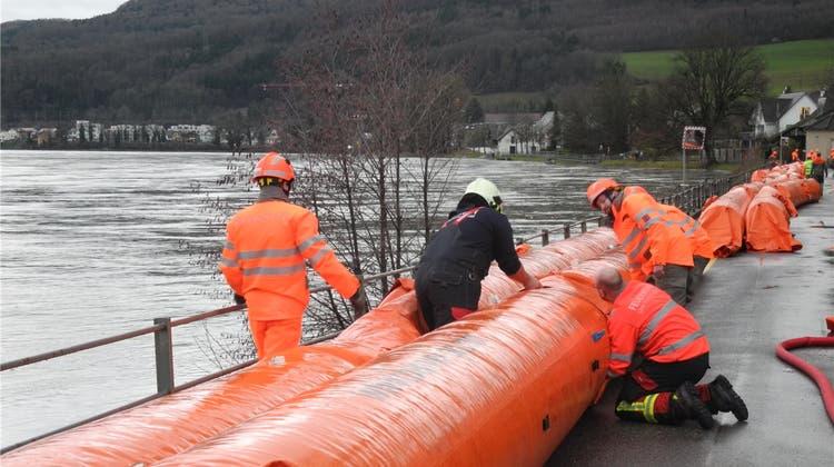 Hochwasser-Gefahr am Rhein: Fast hätte es die Beaverschläuche gebraucht