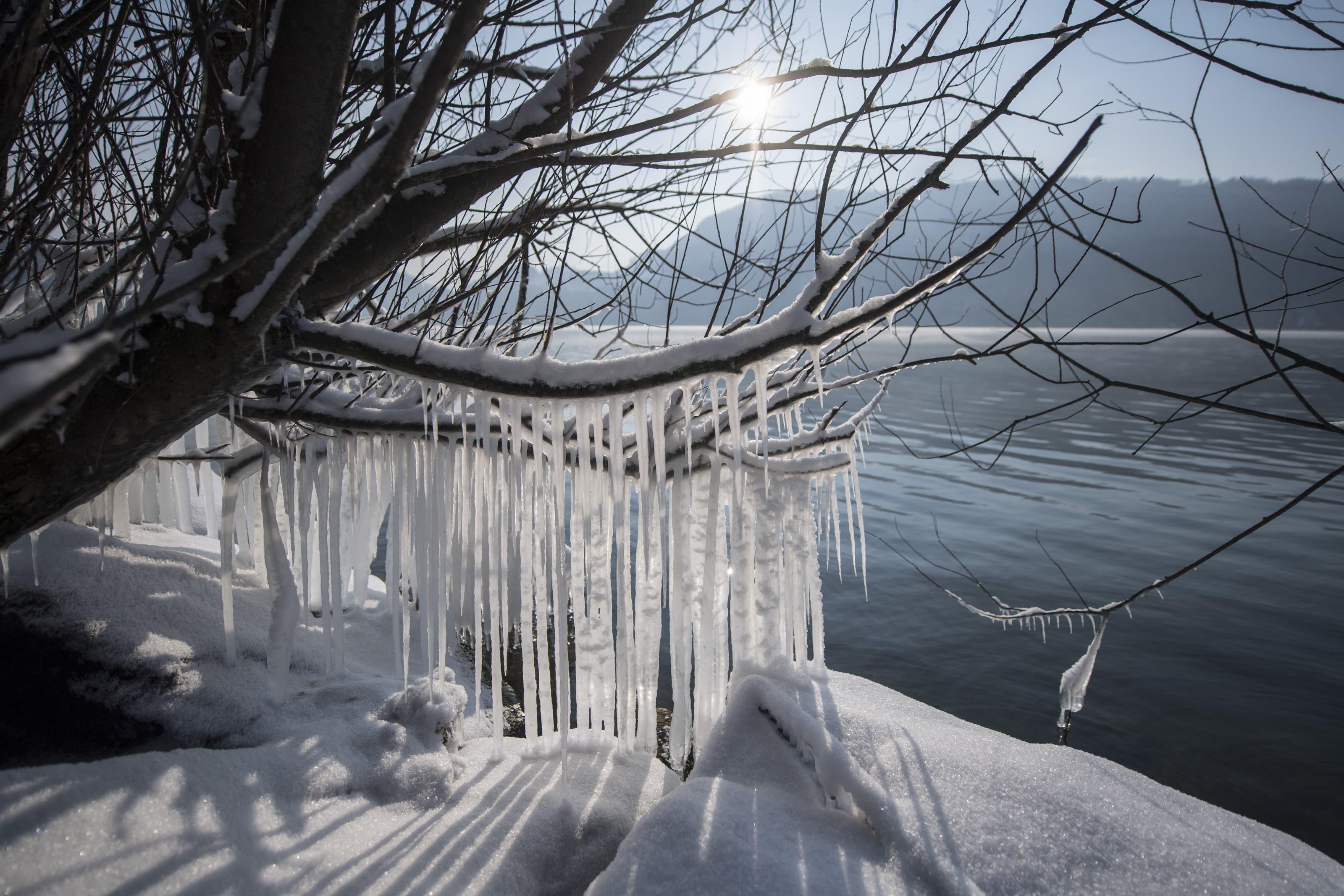 Eisskulpturen bilden sich durch die Kaelte von rund -10 Grad am Ufer des Alpnachersee in Alpnach.