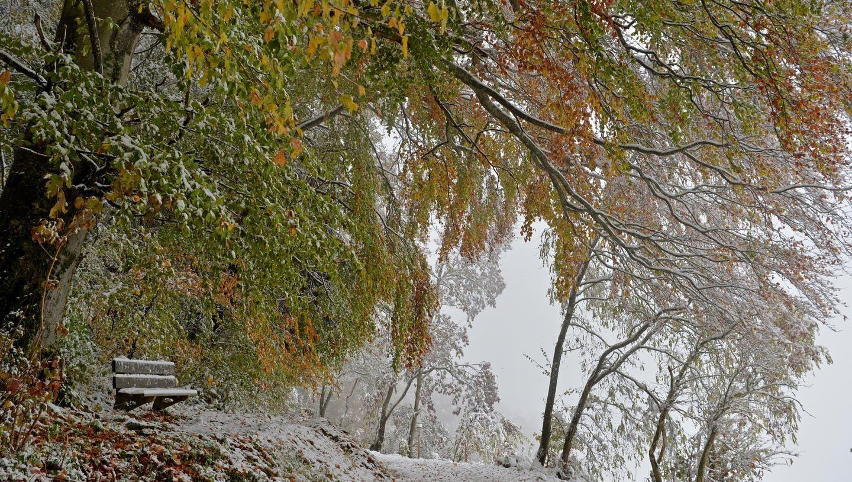 Das ist der erste Schnee der Saison – jetzt braucht auch die Region Basel Winterreifen