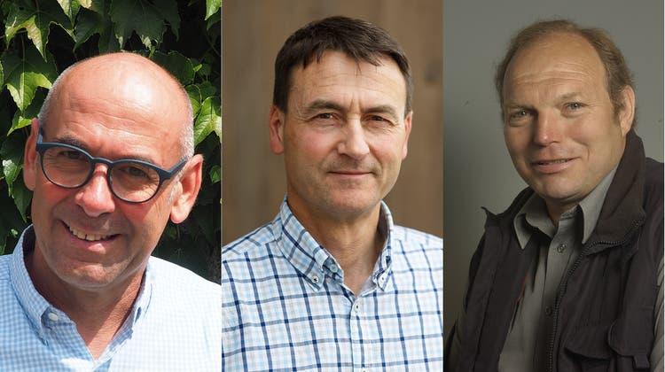 Drei Kandidaten bleiben im Rennen ums Gemeindepräsidium
