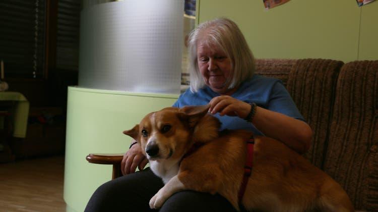 Hunde machen glücklich: Altersheime setzen auf tierische Therapeuten