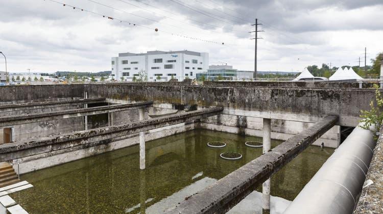 Uferpark für die Öffentlichkeit: Die wichtigsten Facts zur Eröffnungsparty