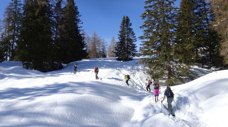 Luxusprobleme der Naturfreunde am Schamserberg
