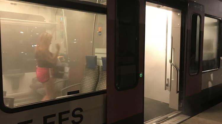 Zug wegen starkem Rauch gestoppt ++ Passagierin: «Dachte, es sei ein Anschlag»