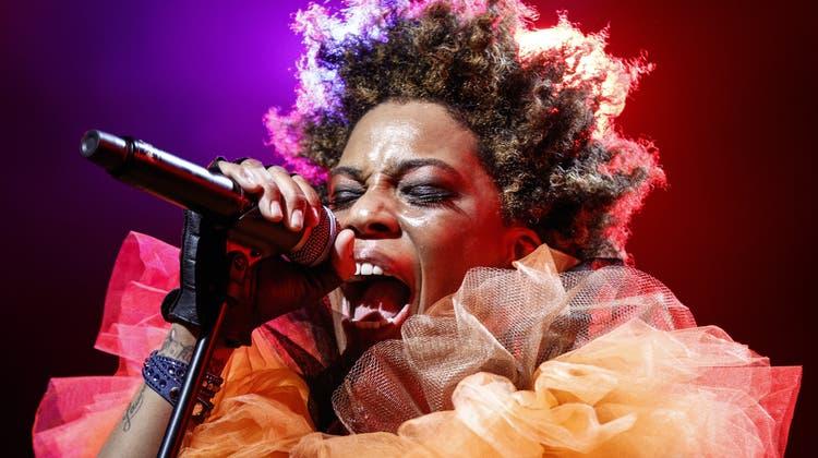 Jubiläumsjahr für «Jazznojazz»: Das beliebte Musikfestival findet ab heute zum 20. Mal statt