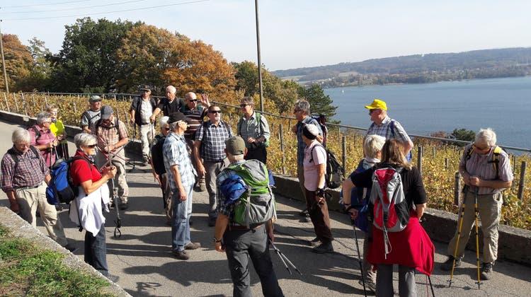 Wandergruppe Seerose Bellach unterwegs von La Neuveville nach Tüscherz