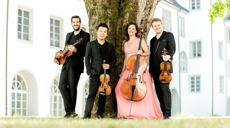 Förderverein will Stadt bereichern – mit einem Stradivari-Quartett