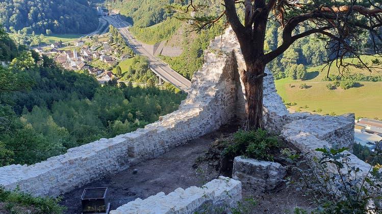 Sanierung der Ruine Witwald als Modellfall für zukünftige Burgsanierungen