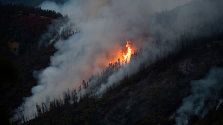 Verein 2000-Watt-Region Solothurn zum Klimawandel: «Müssen endlich Klartext reden»