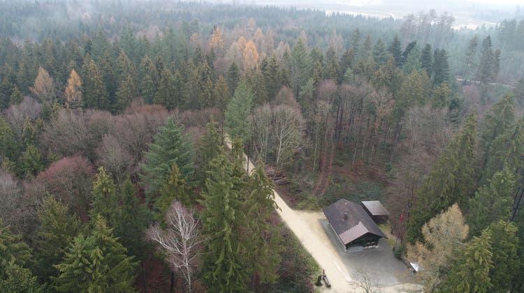 Wald oder «Kies»? – Das bleibt die Frage in Fulenbach