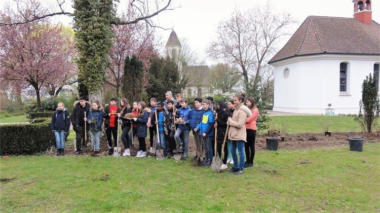 Schüler werten Friedhof ökologisch auf