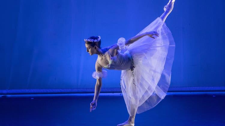 Ein Sprung durch die Ballettgeschichte mit dem Dance Studio Olten