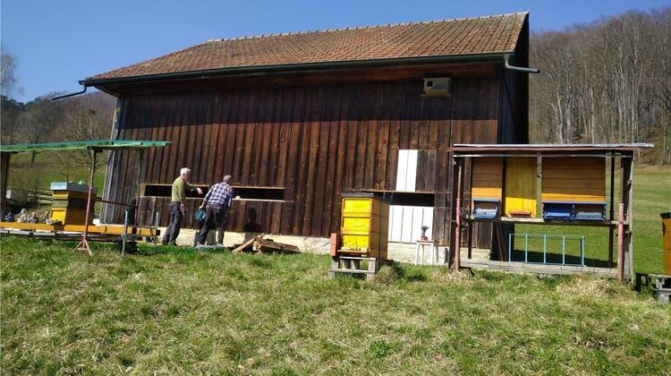 Bienenzüchter haben neues Gebäude gebaut – wegen Nachwuchs-Boom