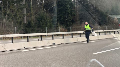Aargauer Polizist rettet verletzte Taube auf der Autobahn – da darf sich auch mal ein kleiner Stau bilden