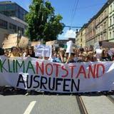 Klimanotstand trifft auf Zustimmung