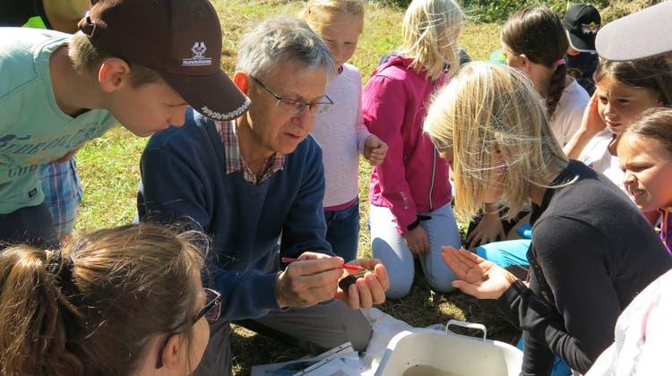 Unterwegs in der Natur: Kindergarten und Primarschule lernen die Natur kennen