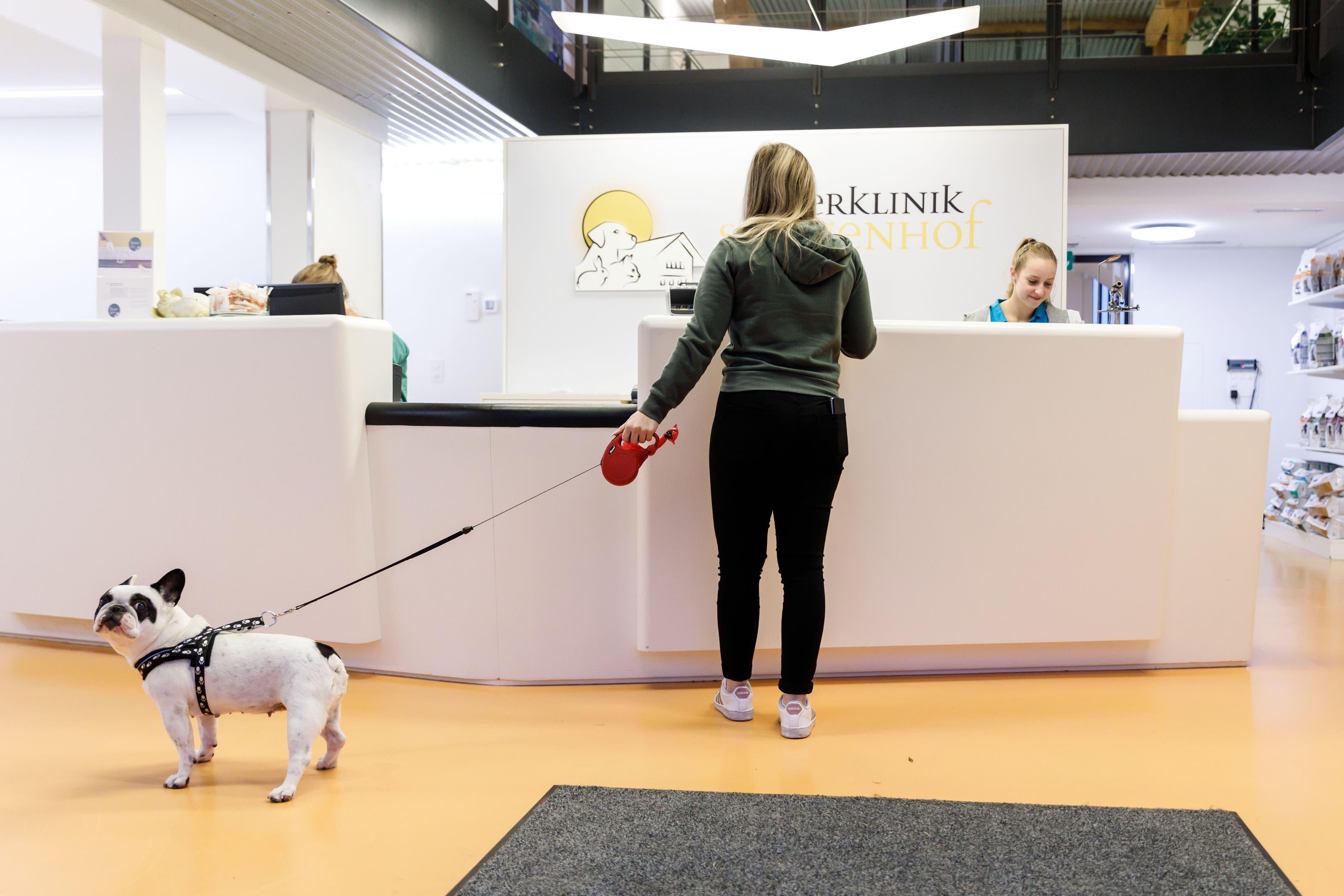 Zu Besuch in der Tierklinik Sonnenhof in Derendingen Anmelden beim Empfangs-Desk