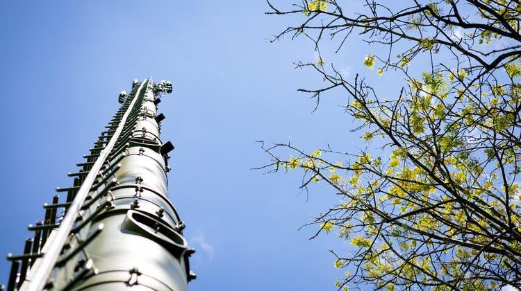 5G-Gegner erklären die angeblichen Gefahren und präsentieren ihre Lösungsansätze
