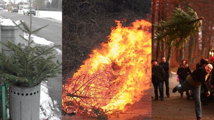 Verbrannt, verhäckselt und geworfen: So verfahren die Gemeinden mit Weihnachtsbäumen