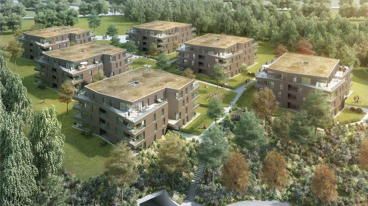 150 Wohnungen in drei Etappen: Der Grundstein zur Überbauung Wydeweg ist gelegt