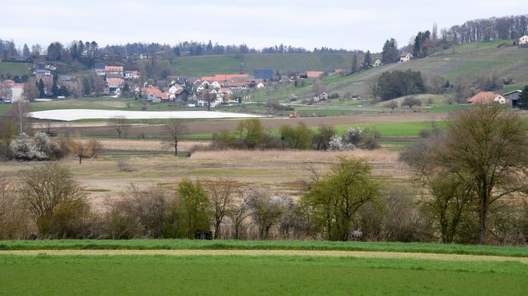 Der Kanton senkt für ein wertvolles Flachmoor ein Stück Land ab