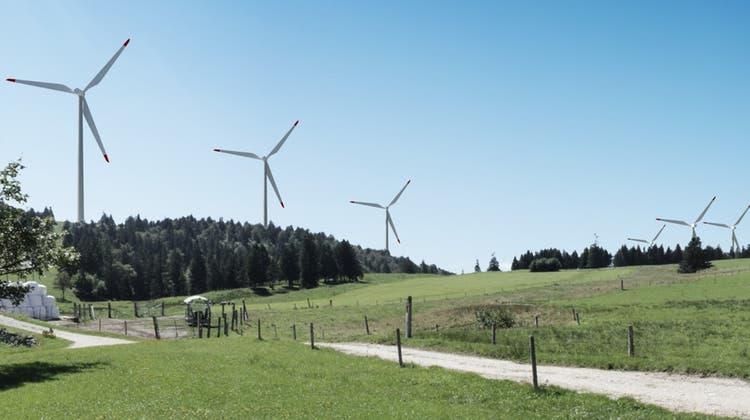 Grenchner Grüne unterstützen den Windpark