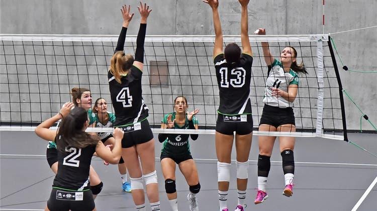 Neuer Coach, neues Glück – Volley Schönenwerd will wieder angreifen