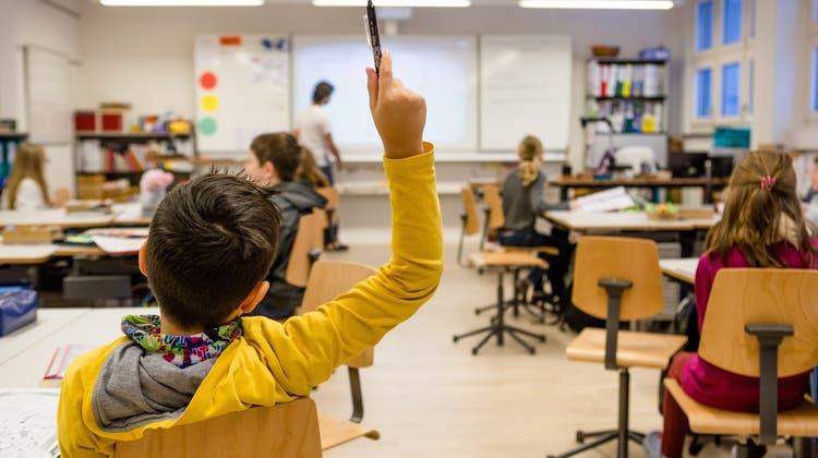 Fortschritte als motivierender Lohn der Arbeit: Sie setzen sich für die Gleichwertigkeit aller Schüler ein
