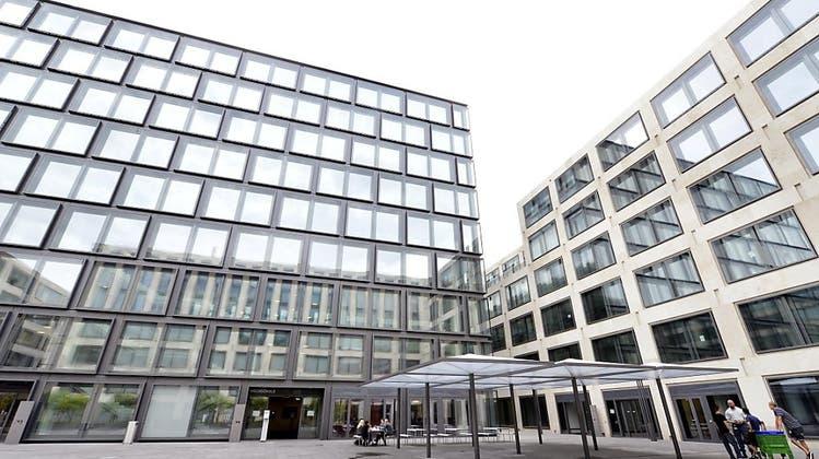 Anmeldungen an der PH Zürich erneut deutlich gestiegen – Kindergarten- und Unterstufe ist gefragt