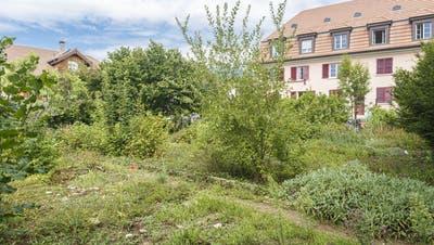 Nach gescheitertem Bauplan: Bauherren des Dilitschquartiers sind masslos enttäuscht
