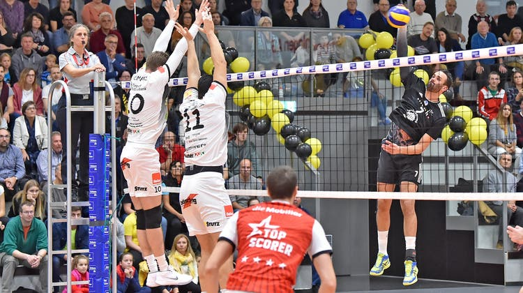 Dank Freilos: Volley Schönenwerd im Europacup direkt im Sechzehntelfinal